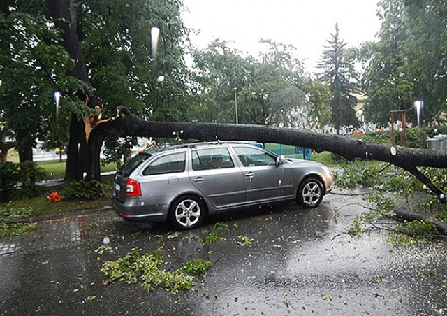 В Чехии вновь объявили штормовое предупреждение