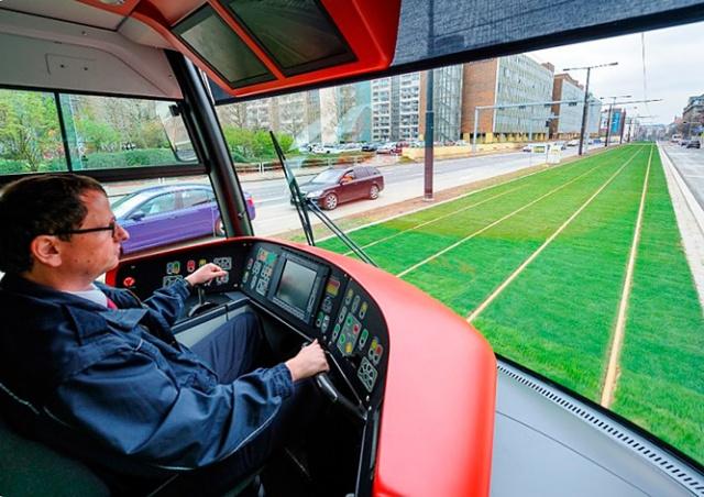 Прага экономит: газона на трамвайных путях стало меньше