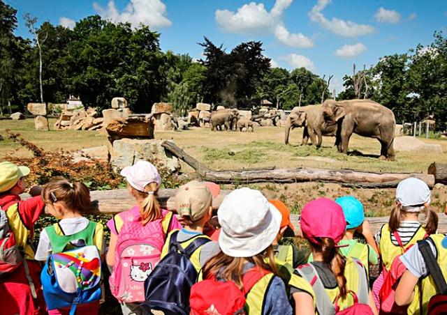 Отличники по естествознанию смогут  посетить Пражский зоопарк бесплатно