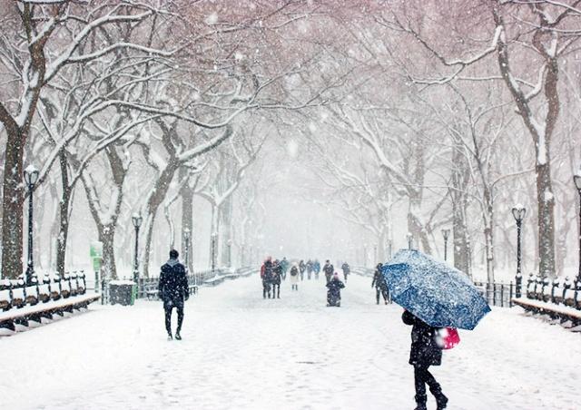Жителей Чехии предупредили о снегопаде и сильном ветре