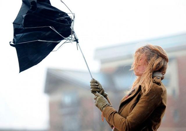 Предупреждение о сильном ветре объявлено в Чехии