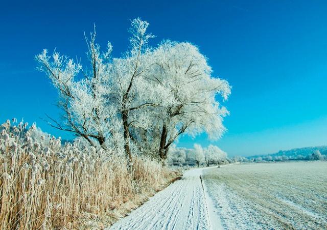В Чехии зарегистрировали мороз в -23°C