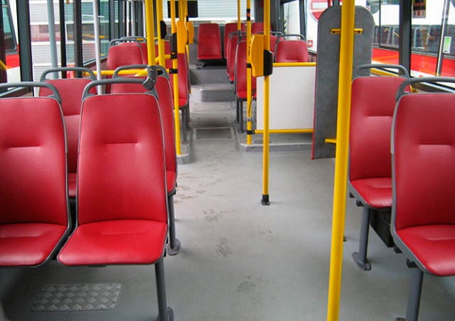 В Праге два иностранца избили водителя автобуса