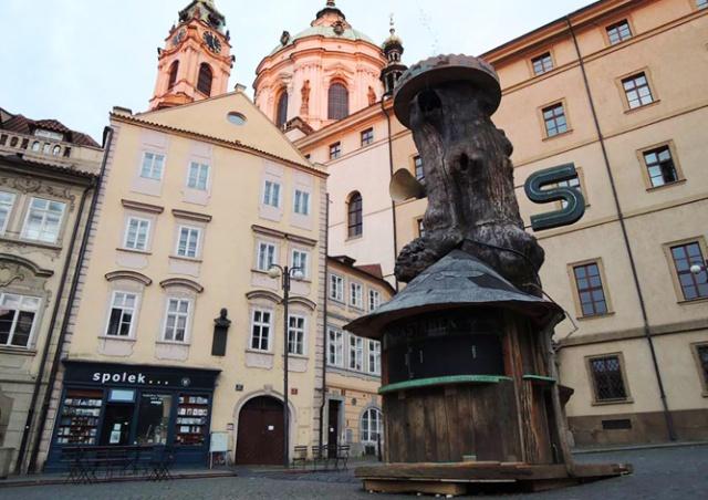В Праге открыли киоск в стволе 350-летнего дуба: видео