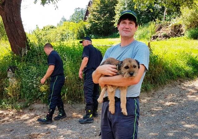Чудо в Чехии: собака выбралась из-под завалов спустя 16 дней