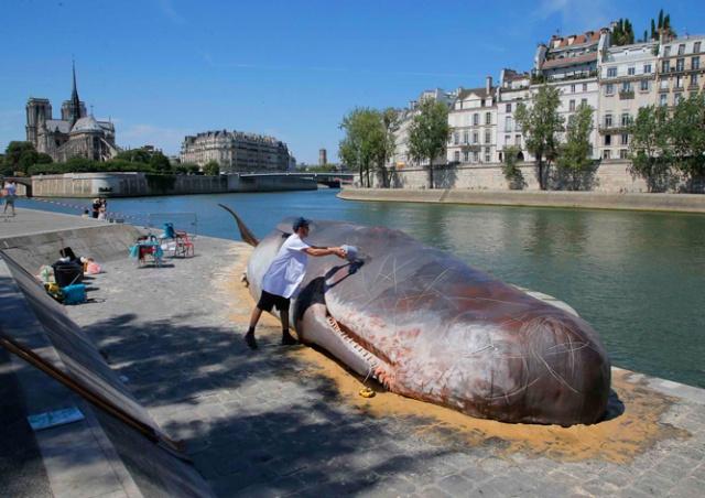 На берег Сены в Париже «выбросился» огромный «кашалот»