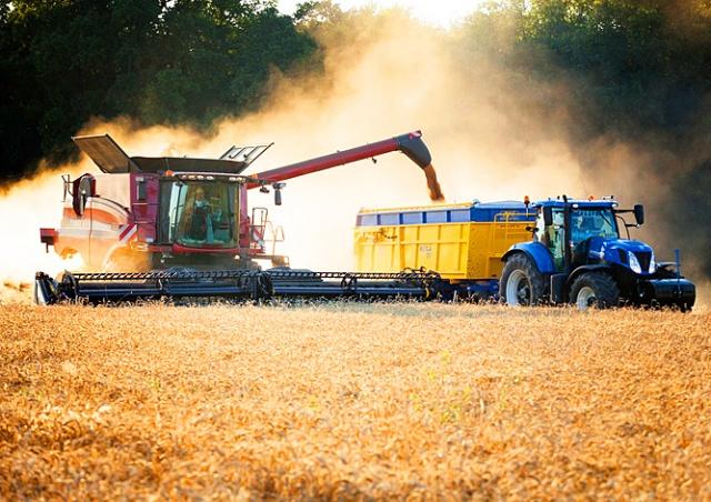 Чехия упростит трудоустройство украинцев в сельском хозяйстве