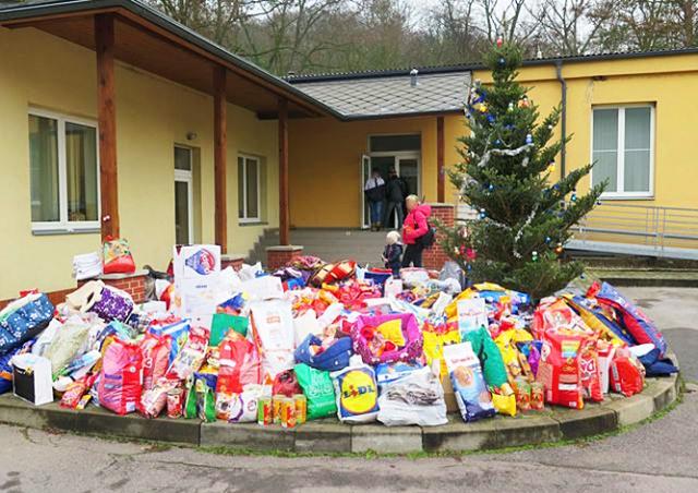 Пражане подарили бездомным собакам на Рождество полугодовой запас корма