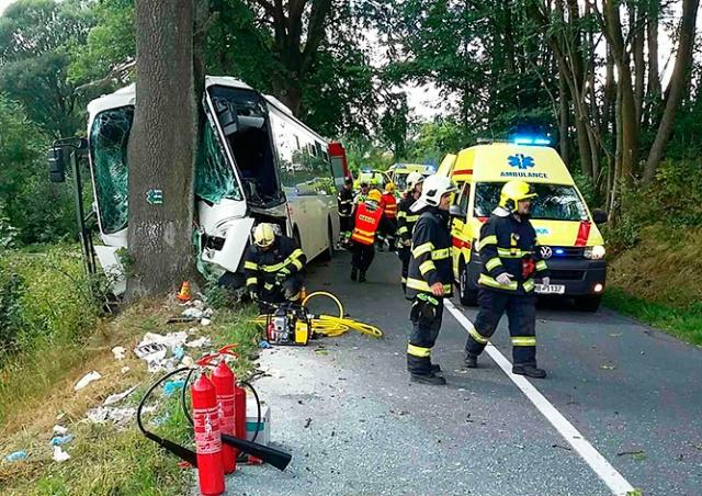 В Чехии автобус врезался в дерево: 11 пострадавших