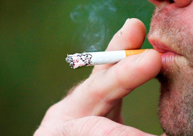 Прага ввела временный запрет на курение в парках