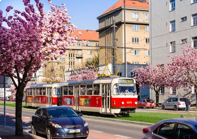 В Праге маршруты пассажиров начнут отслеживать по смартфонам