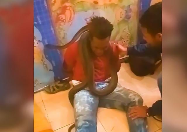 Полицейские пытали задержанного двухметровой змеей: видео