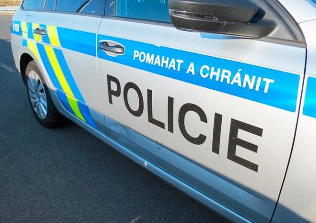 Козел помял полицейскую машину на автомагистрали в Чехии