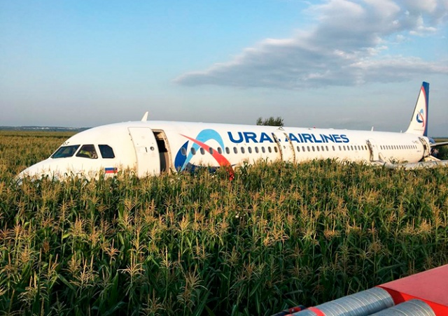 В Подмосковье самолет аварийно сел «на брюхо» в кукурузном поле: видео