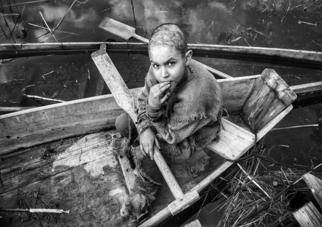 Чешская лента «Раскрашенная птица» Маргоула получает разгромные рецензии и после показа в Торонто