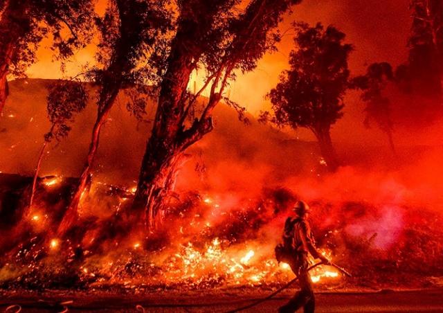 Чехия пожертвует горящей Австралии 2 млн крон