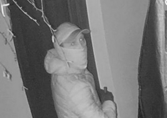 Чешская полиция разыскивает возможного участника банды домушников