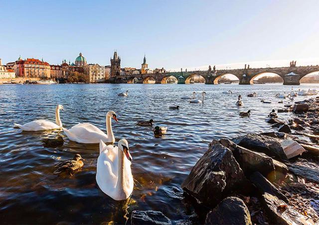 Погода в Праге установила температурный рекорд