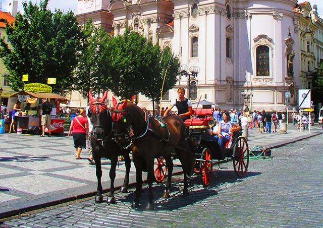 Мэр Праги поддержал идею запретить конные повозки в городе