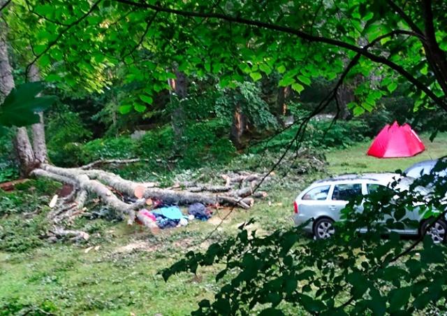 Гражданка Чехии погибла в Болгарии. На ее палатку упало дерево