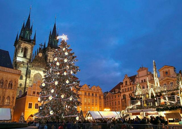Прага объявила награду за помощь в поисках рождественской ёлки