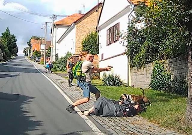 Житель Чехии выстрелом защитил мать от стаффорда: видео
