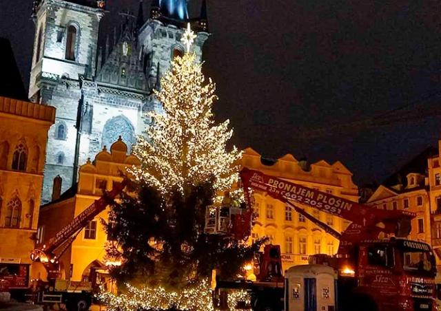 Ёлку на Староместской площади Праги зажгут сегодня вечером