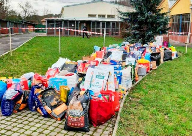 Пражане подарили бездомным собакам на Рождество три тонны корма