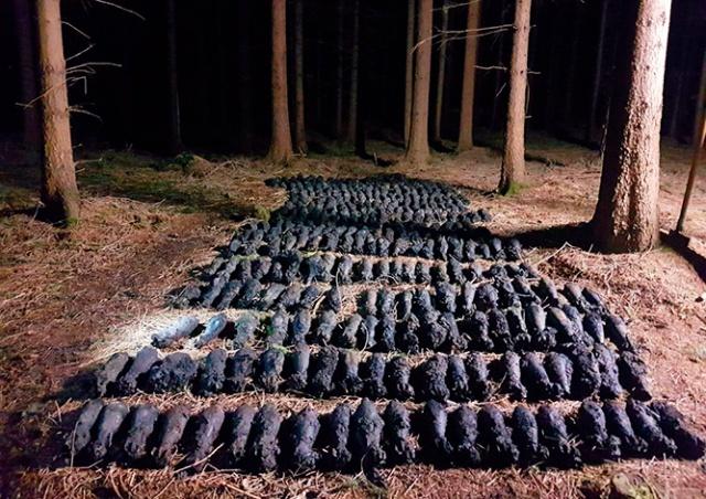 Искатели сокровищ нашли в чешском лесу склад мин