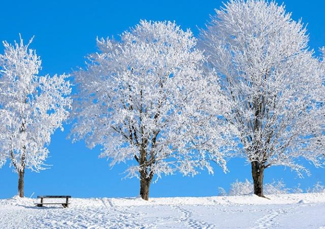 В Чехии зарегистрировали мороз в -28°C