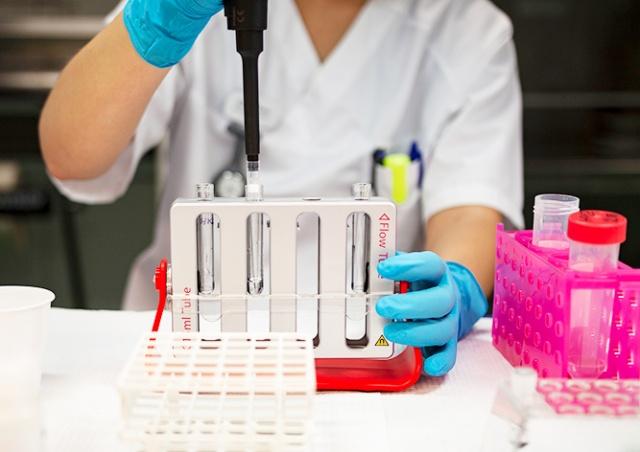 В Чехии участились случаи повторного заражения коронавирусом