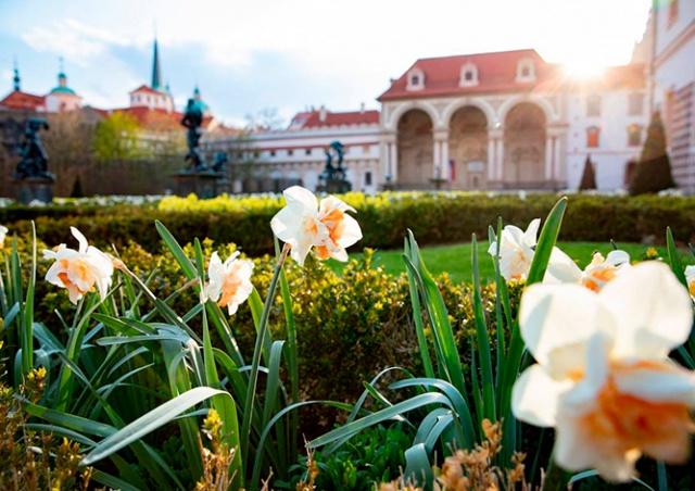 Сад Вальдштейнского дворца вновь открыли для посетителей