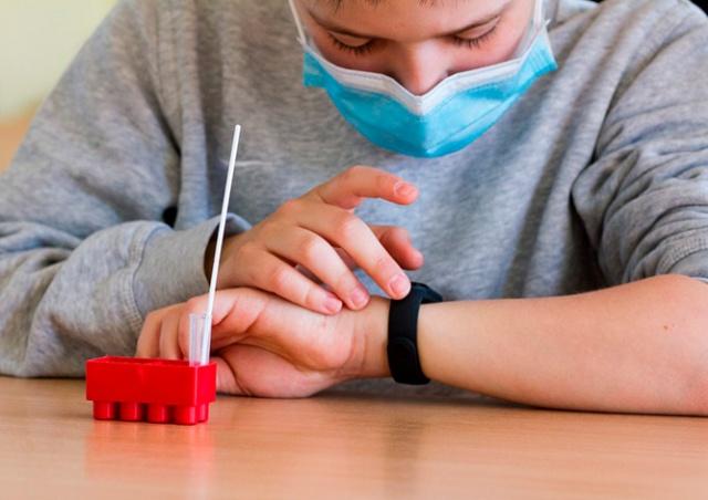Минздрав Чехии сообщил результат тестирования на коронавирус в школах