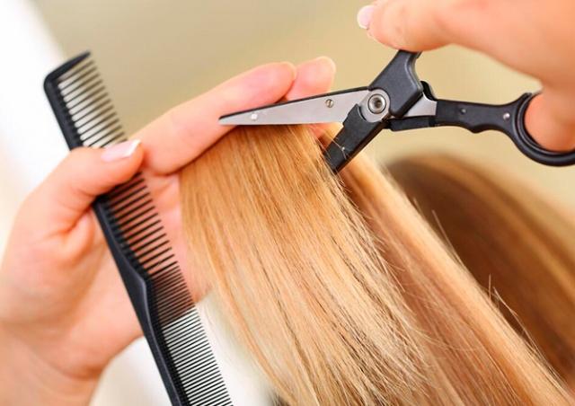 Минздрав Чехии уточнил, какие данные у клиентов будут требовать парикмахеры
