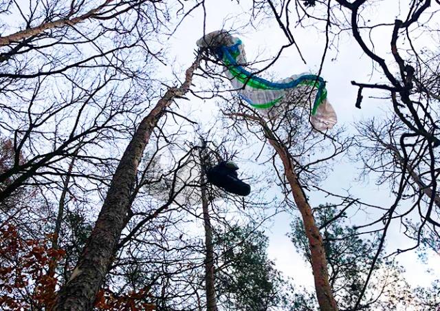 Под Прагой парапланерист повис на дереве. Пришлось вызывать вертолет