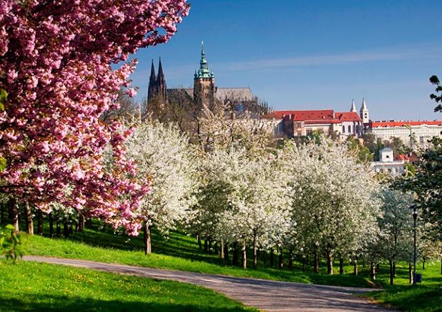 В выходные в Чехии потеплеет до 21°C