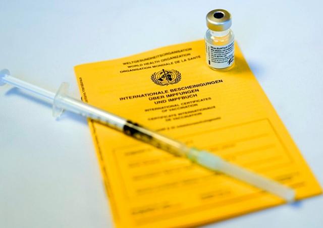 Европарламент назвал дату введения единого «паспорта вакцинации»