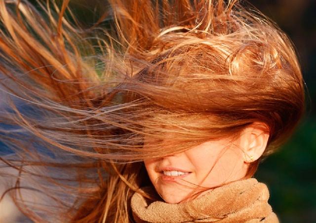 Жителей Чехии предупредили о заморозках и сильном ветре