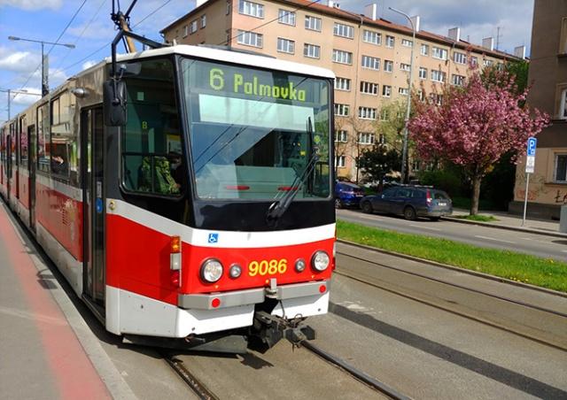 В Праге трамваи и автобусы начнут открывать пассажирам переднюю дверь
