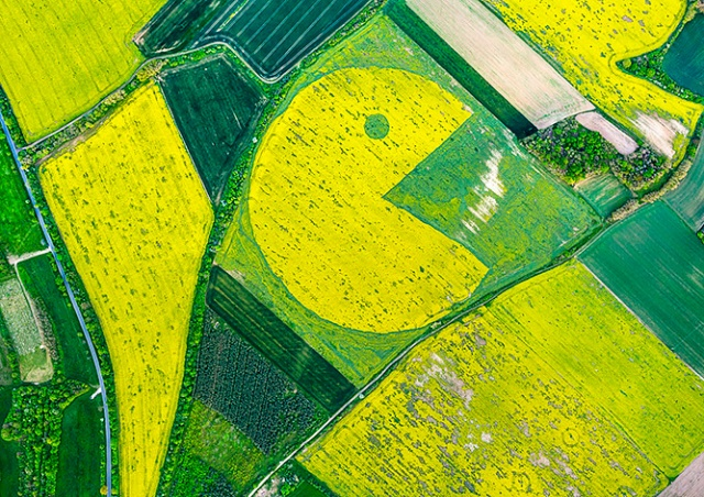 «Сожрал дотации»: в Чехии активисты нарисовали Пакмана в поле компании Agrofert