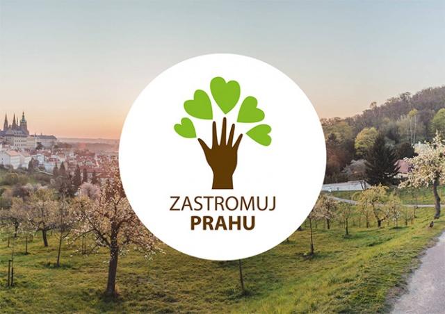 Прага предложила горожанам «усыновить» деревья