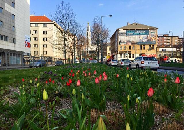 Прага запустила «онлайн-карту ощущений» от городских мест