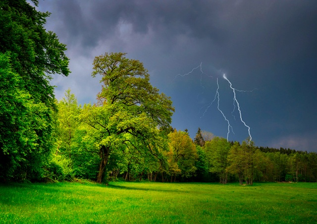 Предупреждение о сильных грозах объявлено в Чехии