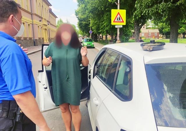 Жительница Чехии забыла сковородку с обедом на крыше своего авто: видео
