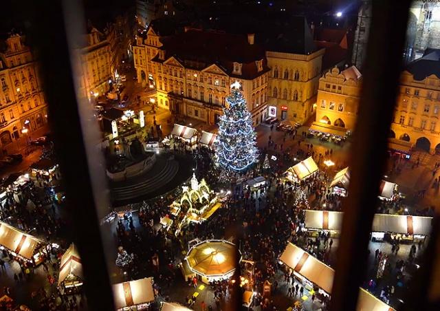Готовь сани летом: Прага начала поиск рождественской ёлки и объявила награду за помощь