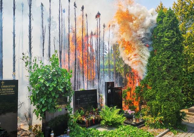 На Виноградском кладбище в Праге произошел пожар