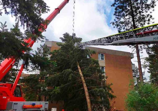 Сильные грозы вновь наделали бед в Чехии: видео