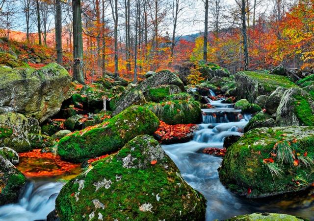 Природная локация Чехии впервые включена в список всемирного наследия ЮНЕСКО