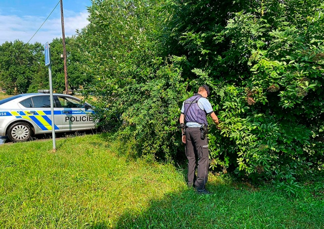 В Чехии 30 полицейских два дня искали сбежавшего крокодила, а он никуда не сбегал