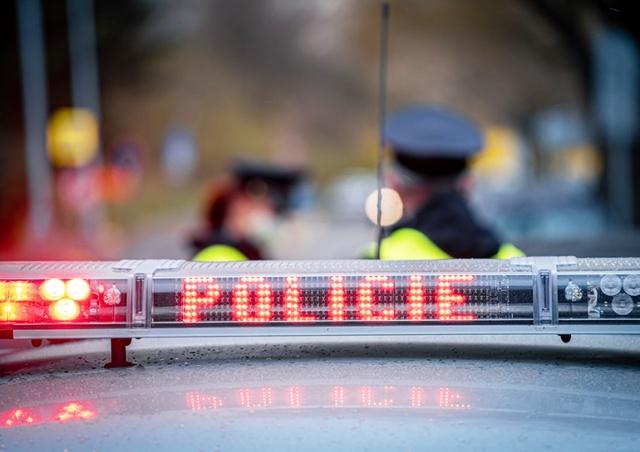 В Чехии соседи вызвали полицию из-за криков в подвале. Причина оказалась забавной